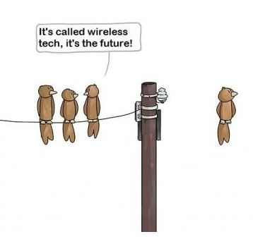 Wireless future